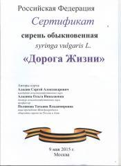сертификат дорога 001